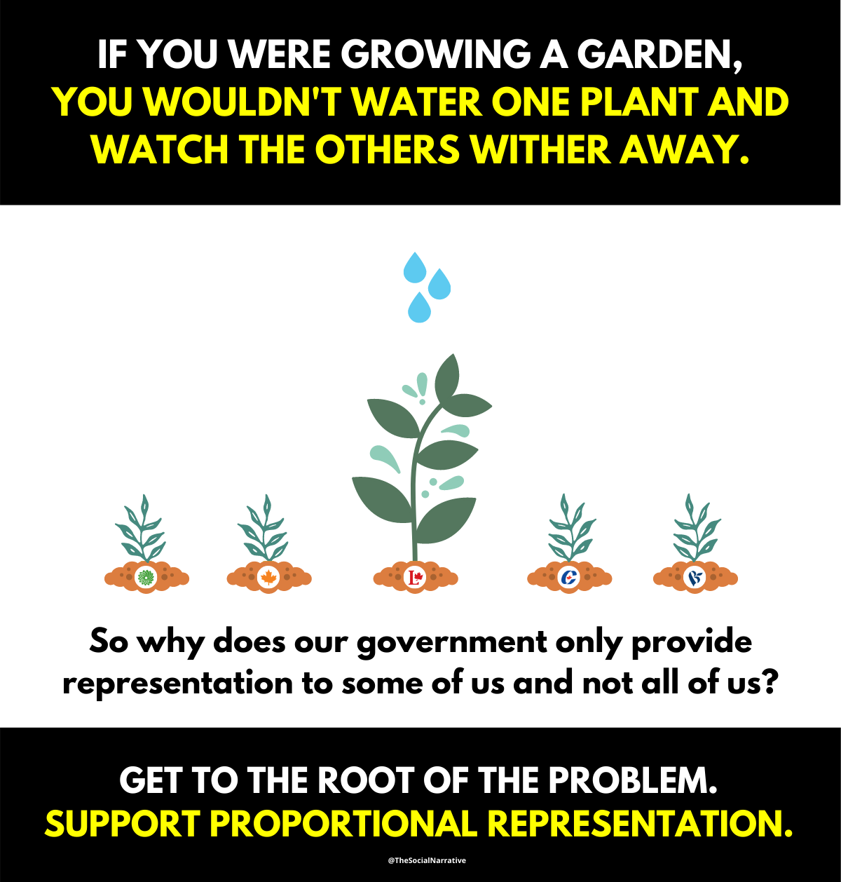 Pro Rep pictured as a garden.